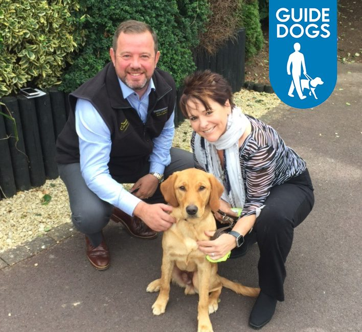 Tommy Guide Dogs